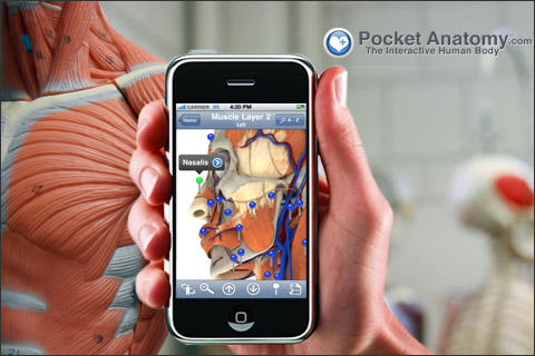 Pocket Body on iPhone & iPod Touch