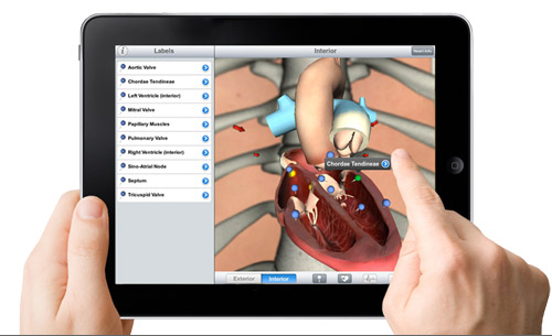 Pocket Heart, Best Medical App