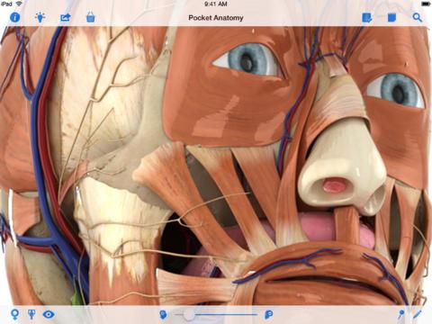 New iOS7 Interface