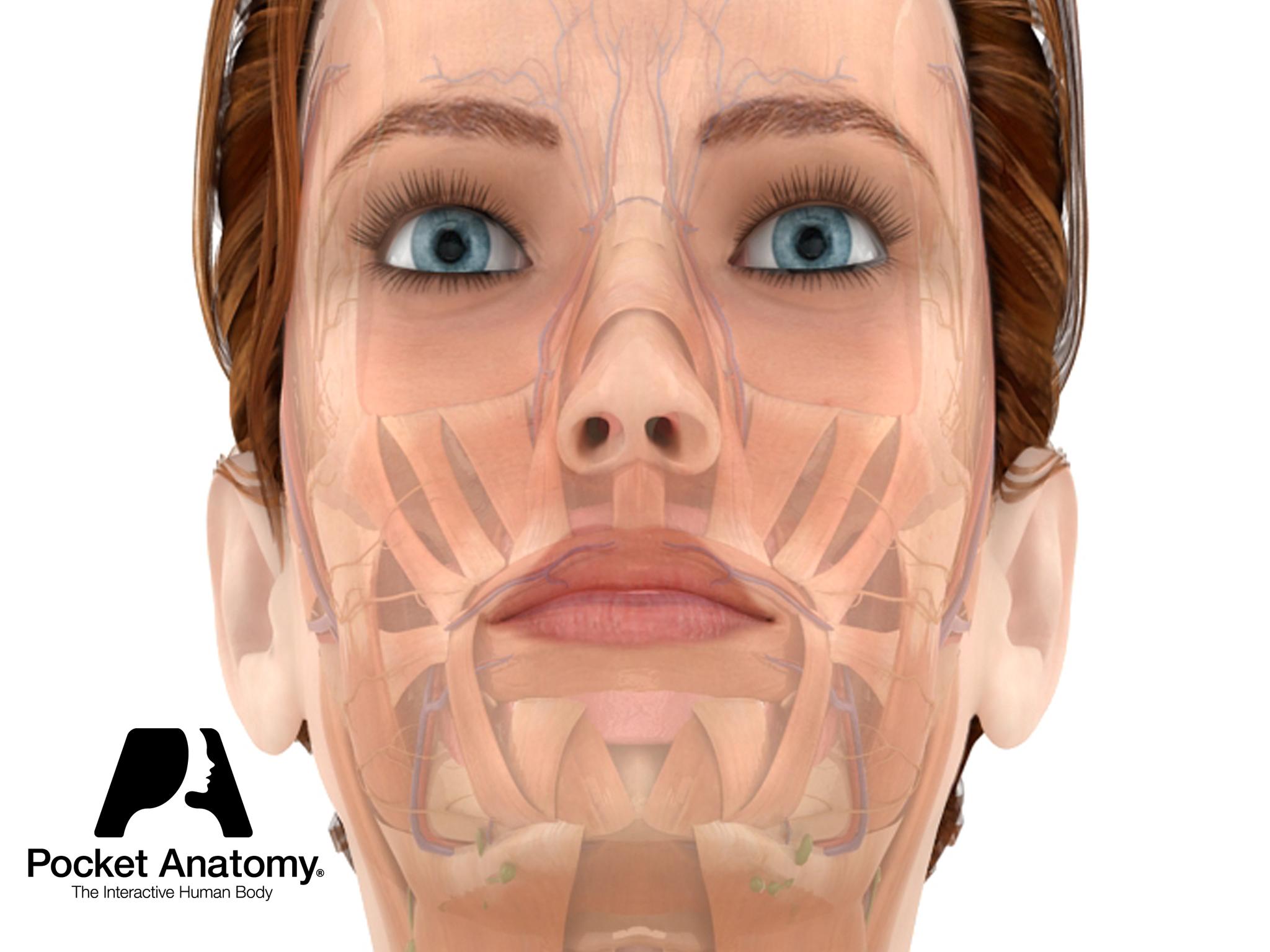 Anatomy of Eye Conditions - Pocket Anatomy